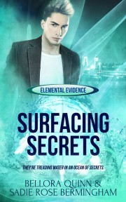 SURFACING_SECRETS_QUINN_BERMINGHAM